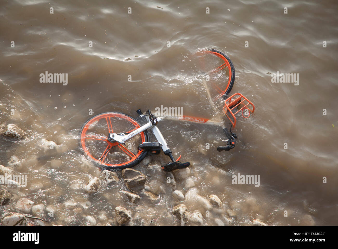 River water laps over a discarded Mobike hire bike on the shoreline thrown into the River Thames by vandals near Westminster Bridge - Stock Image