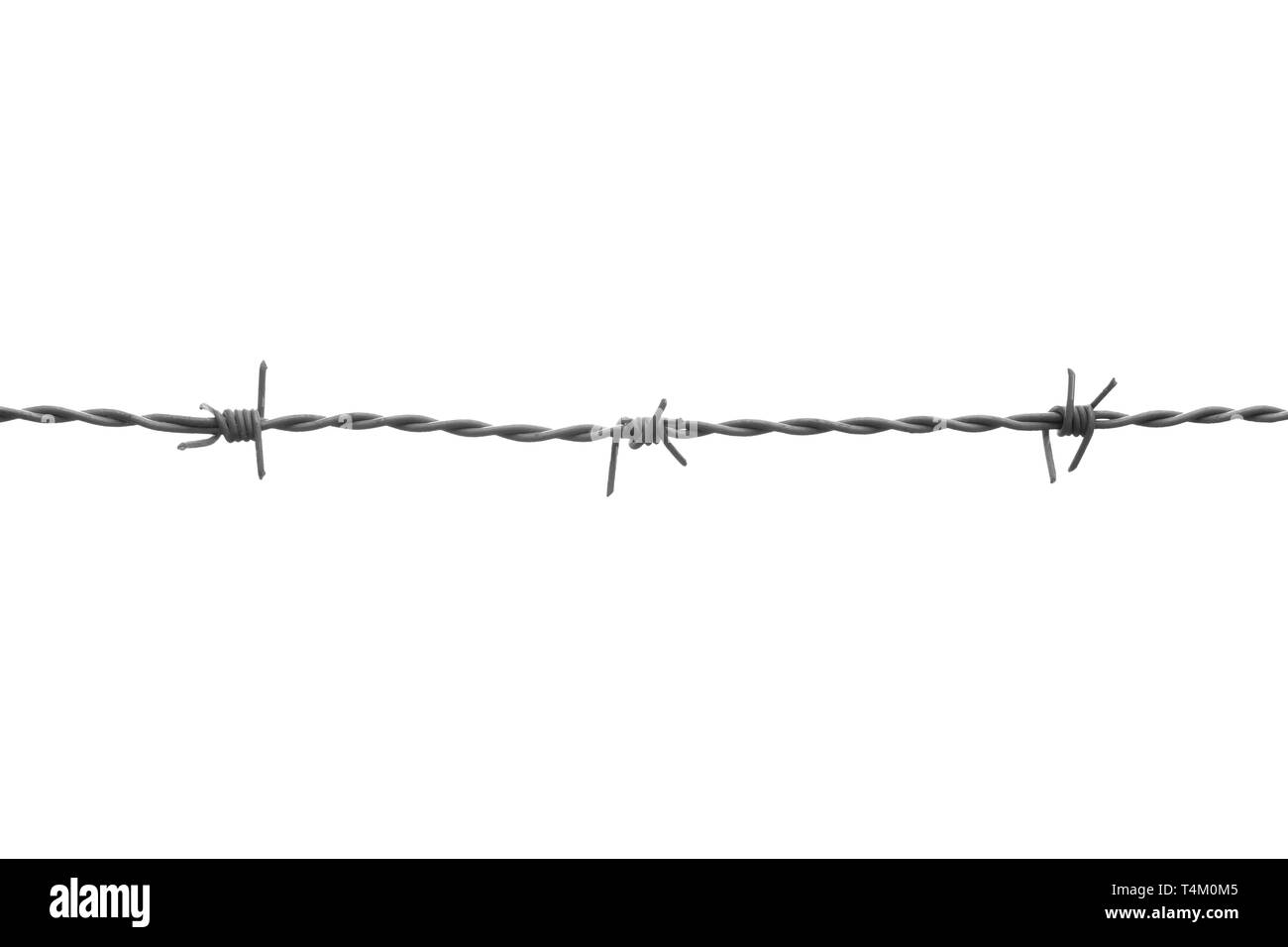 One line of gray barbed wire with three knots. Isolated on white background - Stock Image