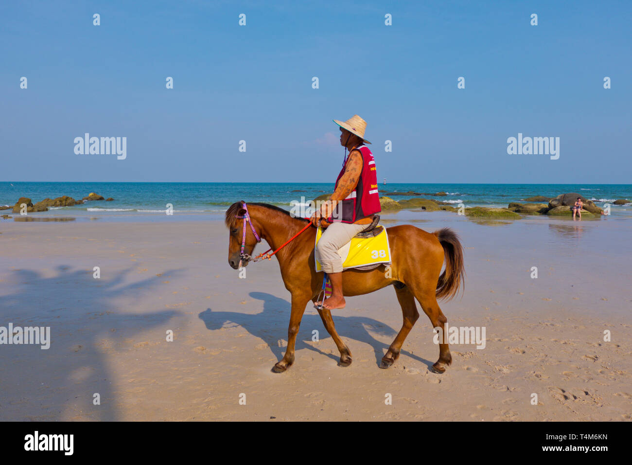 Pony for hire, beach, Hua Hin, Thailand Stock Photo