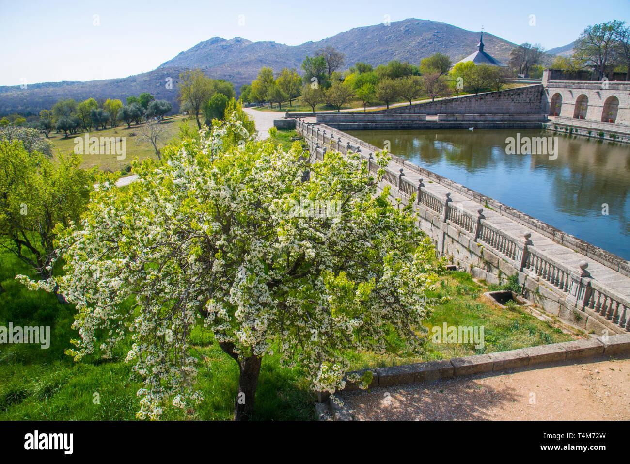 Huerto de los Frailes. Royal Monastery, San Lorenzo del Escorial, Madrid province, Spain. Stock Photo