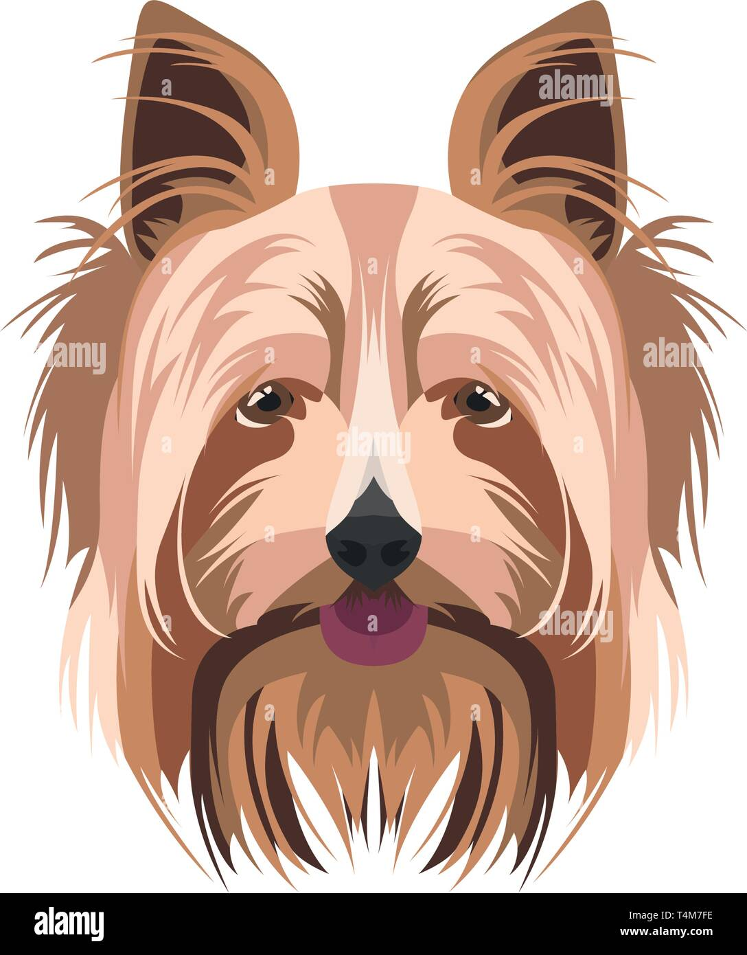 Illustration Yorkshire Terrier   For all dog owners. What you love about his dog? Puppy dog eyes, wagging tail, smiling, barking. The Yorkshire Terr - Stock Image