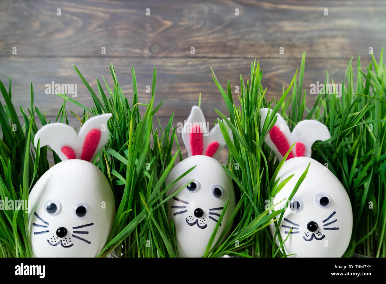 Funny easter eggs cute bunny in the grass. Happy Easter ...