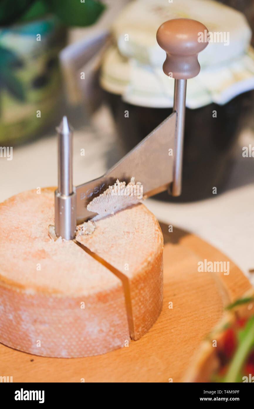 Gourmet. Aged refined cheese and cheese cutter on dark natural background. Ecological clean products. - Stock Image