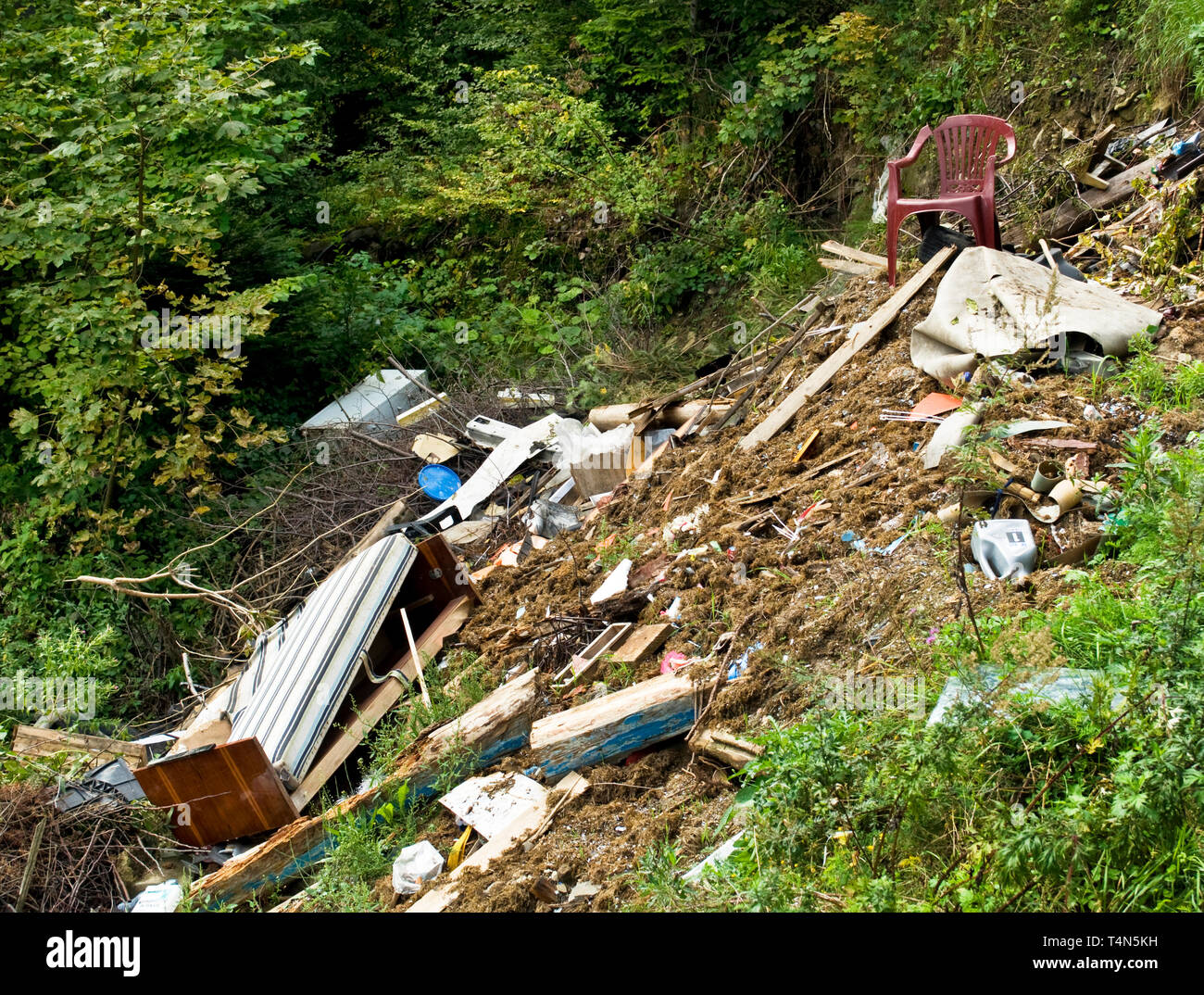 Garbage dump - polluted forest - Stock Image