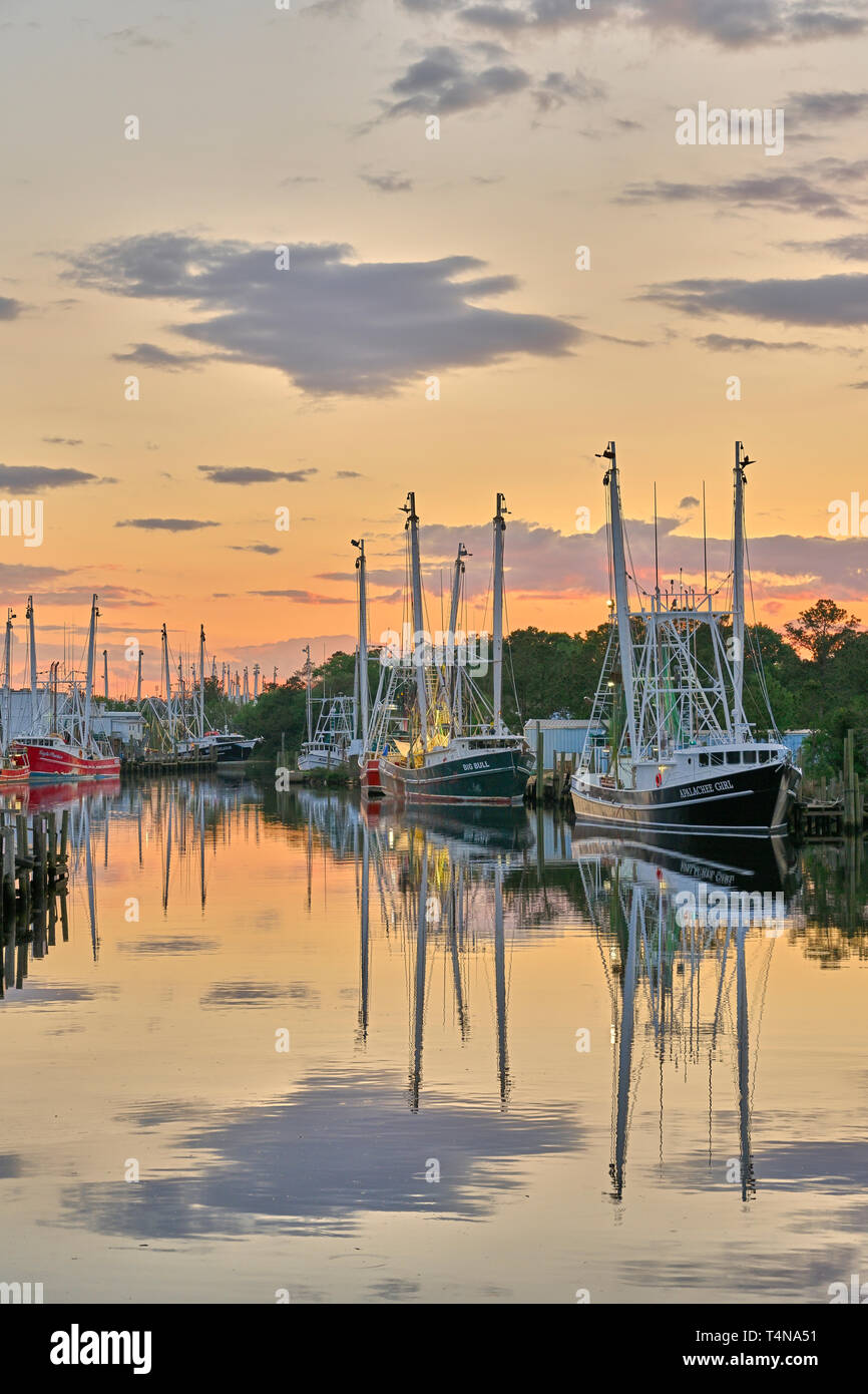 Commercial Fishing Boats And Shrimp Boats Tied Up At