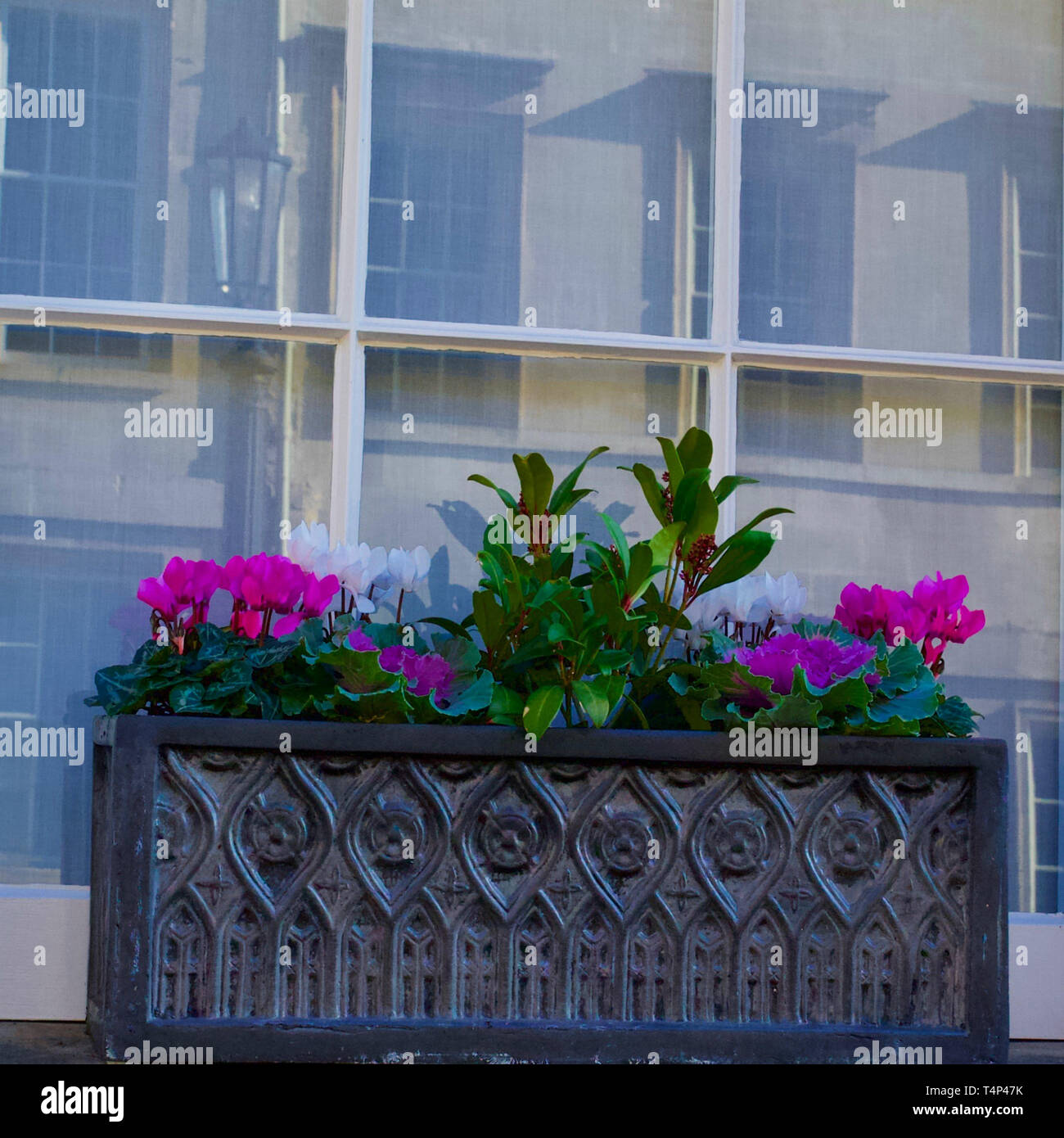 Potted flowers in a window box. - Stock Image