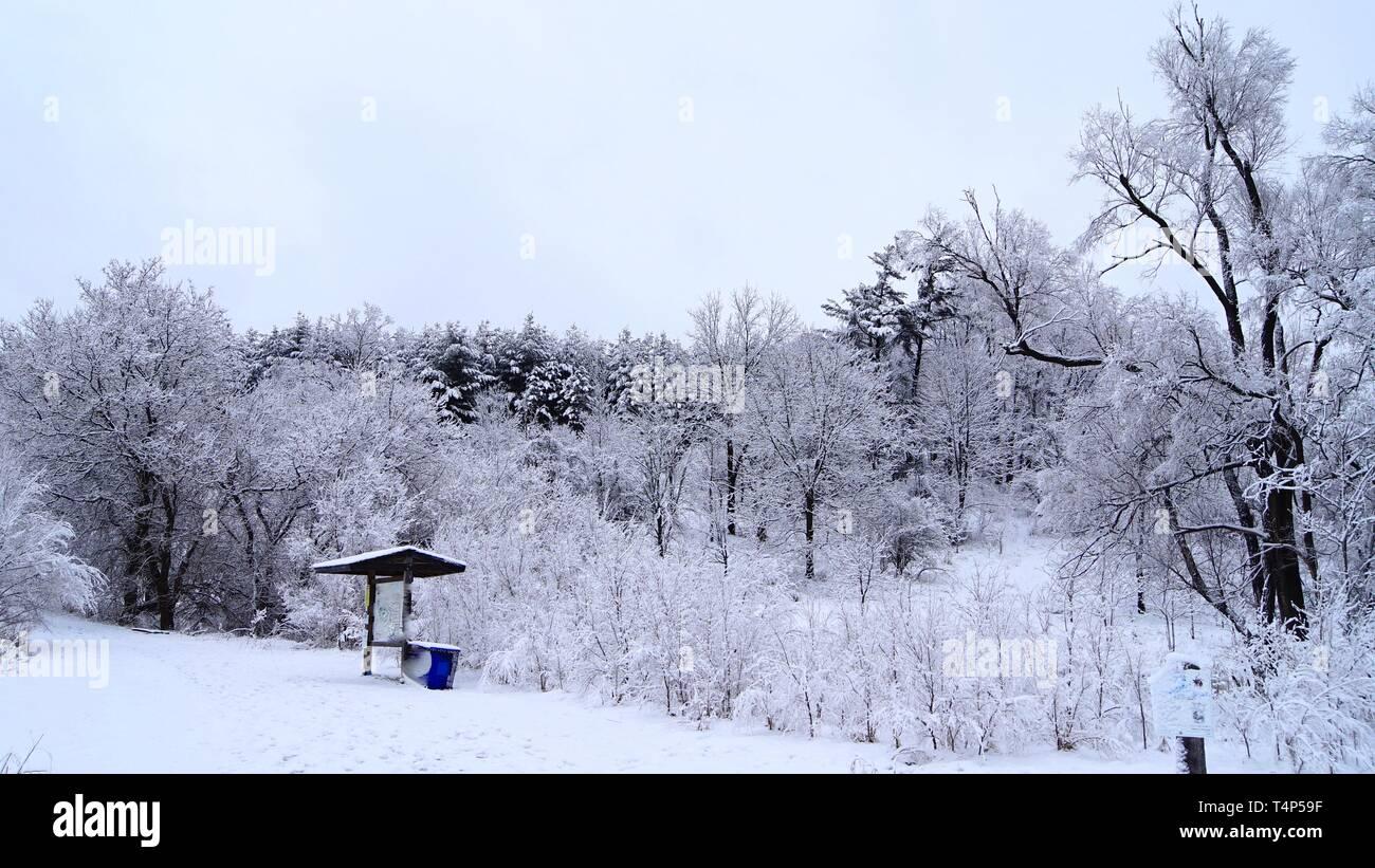 a beautiful  scene of canadian winter landscape - Stock Image