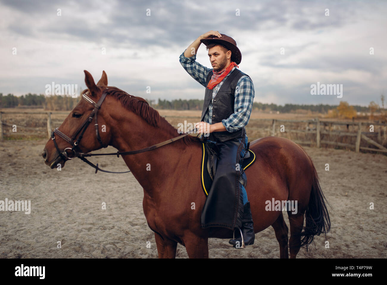 Cowboy Riding A Horse In Desert Valley Western Vintage Male Person On Horseback Wild West Adventure Stock Photo Alamy
