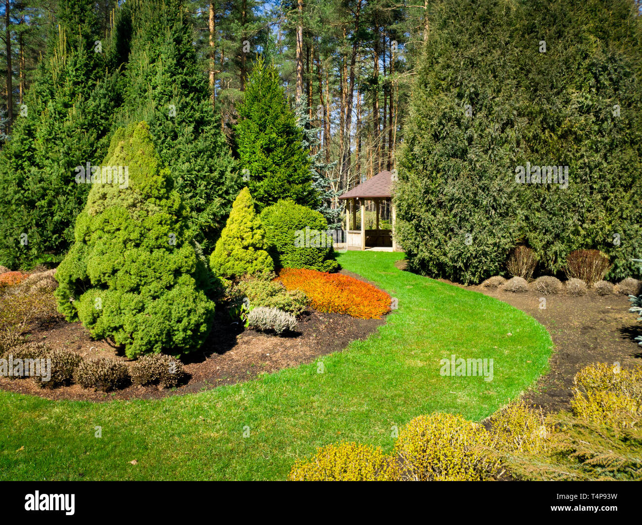 beautiful landscaped garden with conifers and bower Stock Photo