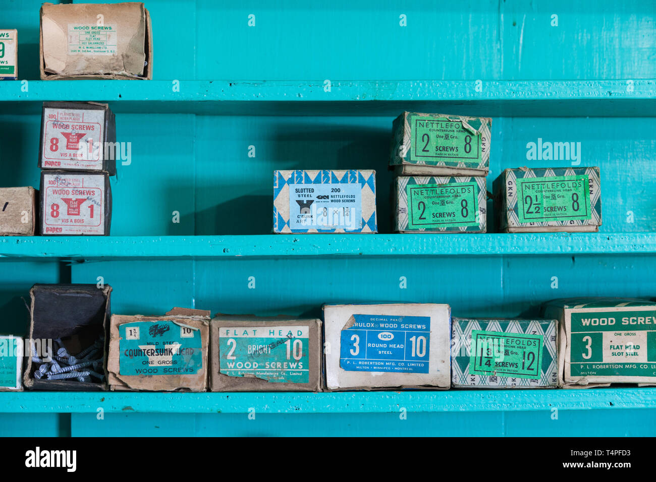 Woodscrews in boxes on a shelf - Stock Image