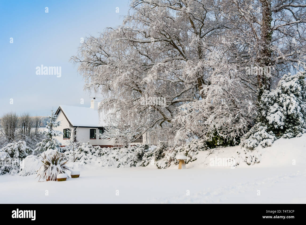 A private garden in Devon covered in snow in the depths of winter. - Stock Image
