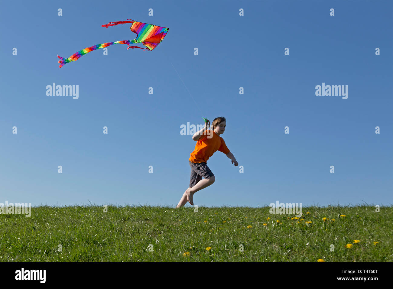 boy flying kite, Wilhelmsburg, Hamburg, Germany - Stock Image