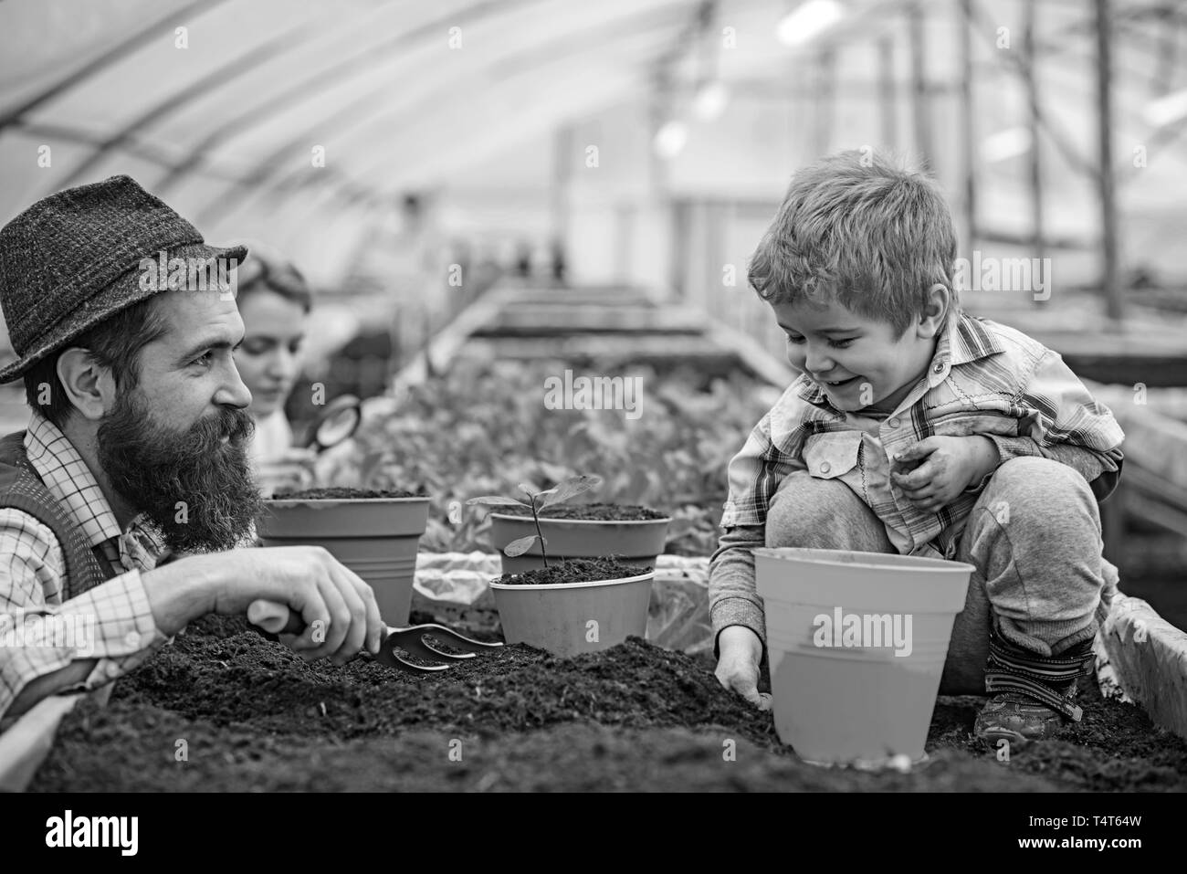 Smiling kid playing with family in greenhouse. Bearded man in blue vest, yellow shirt and hat looking at his son, mommy checking plants with magnifyin - Stock Image
