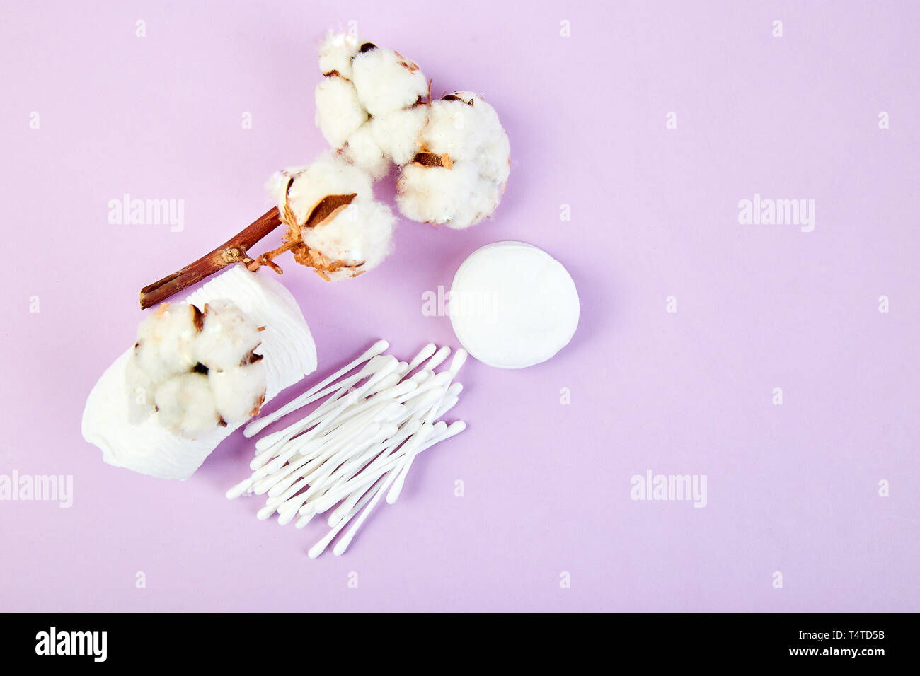 Branch of cotton plant, eared sticks, cotton pads, towel, cosmetic makeup removers tampons, hygienic sanitary swabs  on purple background Top view. Sp Stock Photo