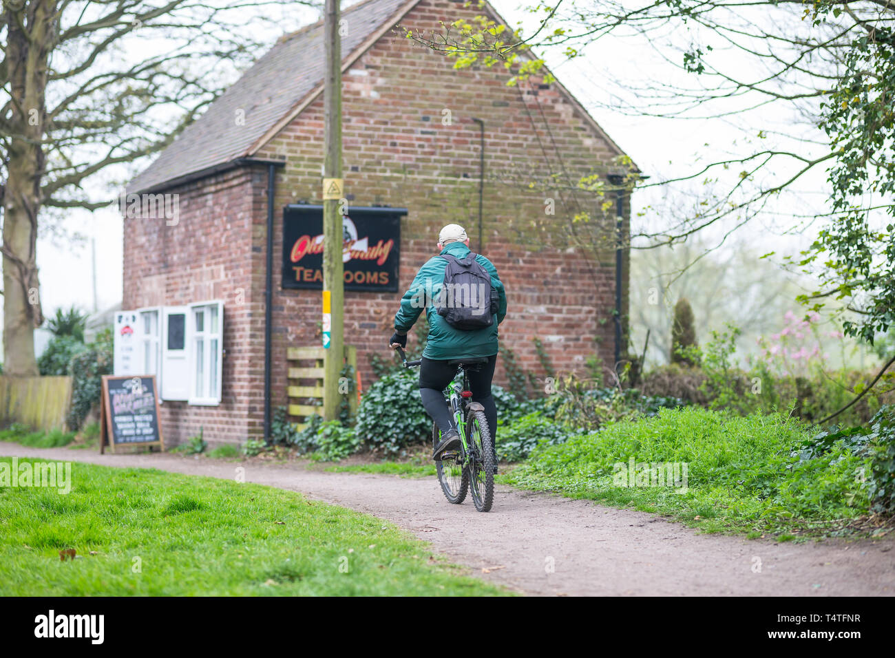 Rear view of senior man on bicycle in green coat with rucksack on his back, cycling alone along UK canal towpath past an open tearoom, spring morning. - Stock Image
