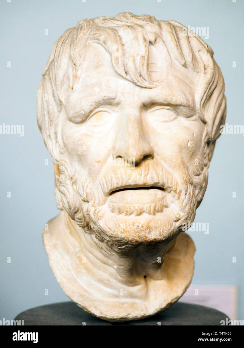 Marble head of an old man, perhaps the poet Hesiod Roman copy after a lost hellenistic original of the 2nd century BC Stock Photo