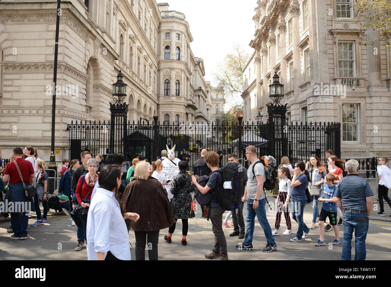Extinction Rebellion rebel in Central London, bringing the centre of the city to a halt on 19th April 2019. Stock Photo