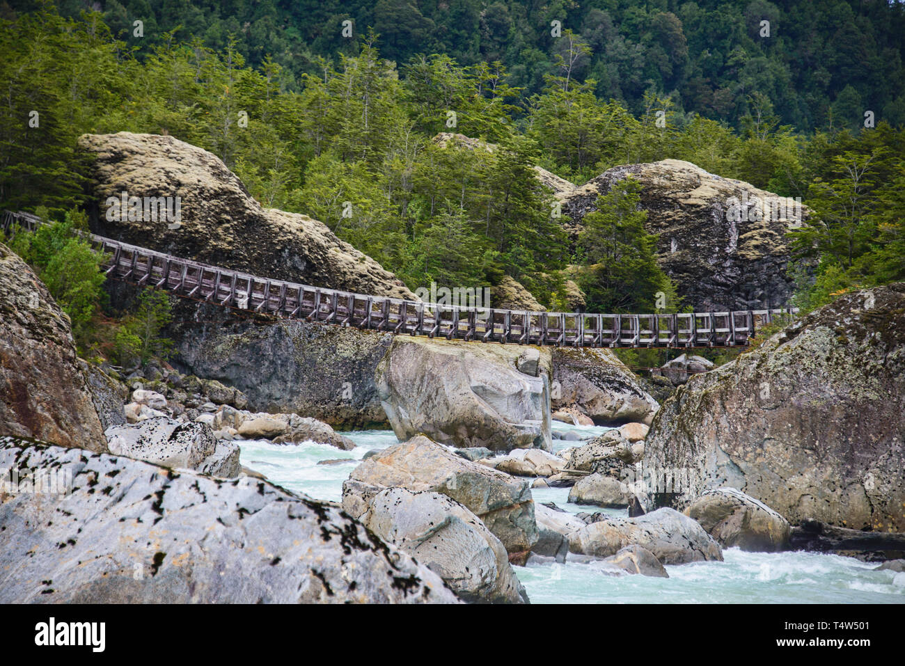 Hanging bridge at the Queulat National Park, Patagonia, Aysen, Chile - Stock Image