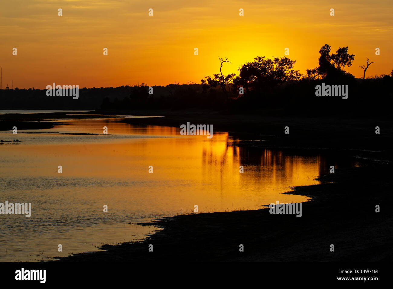 Sunset over the River Chobe on a summer evening in Botswana Stock Photo