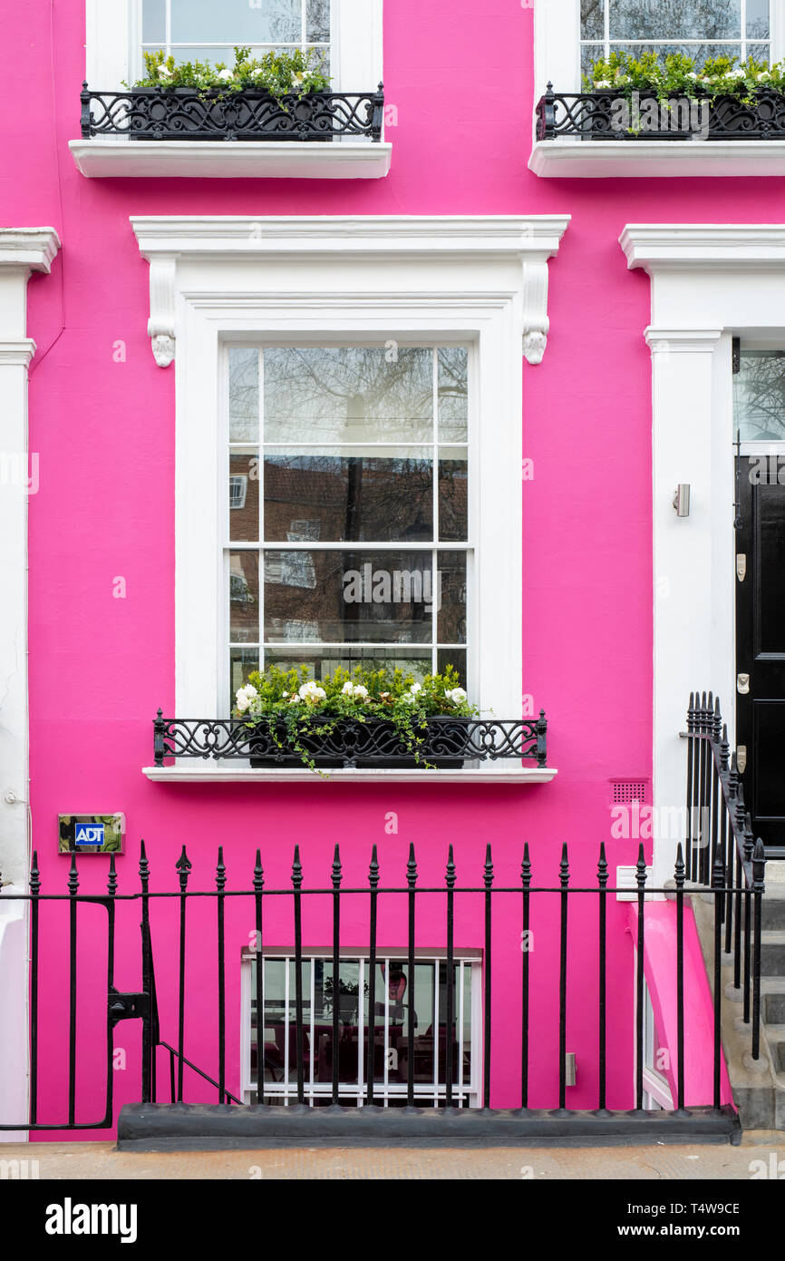 Colourful pink terraced house and window box with flowers in Denbigh Terrace, Notting Hill, London, England - Stock Image