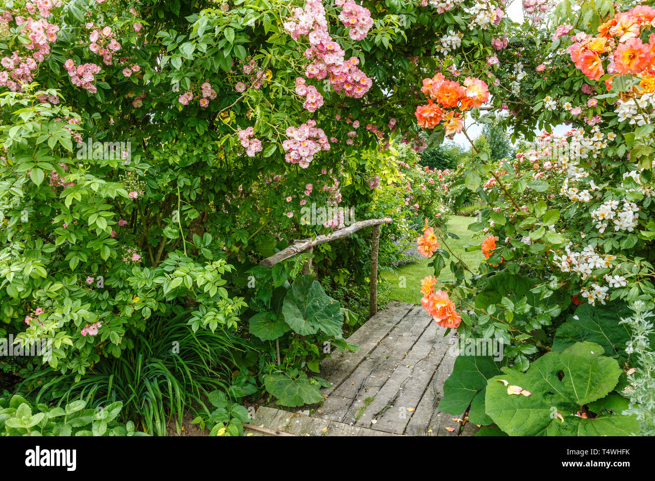 Horticulteur Val D Oise japanese val stock photos & japanese val stock images - alamy