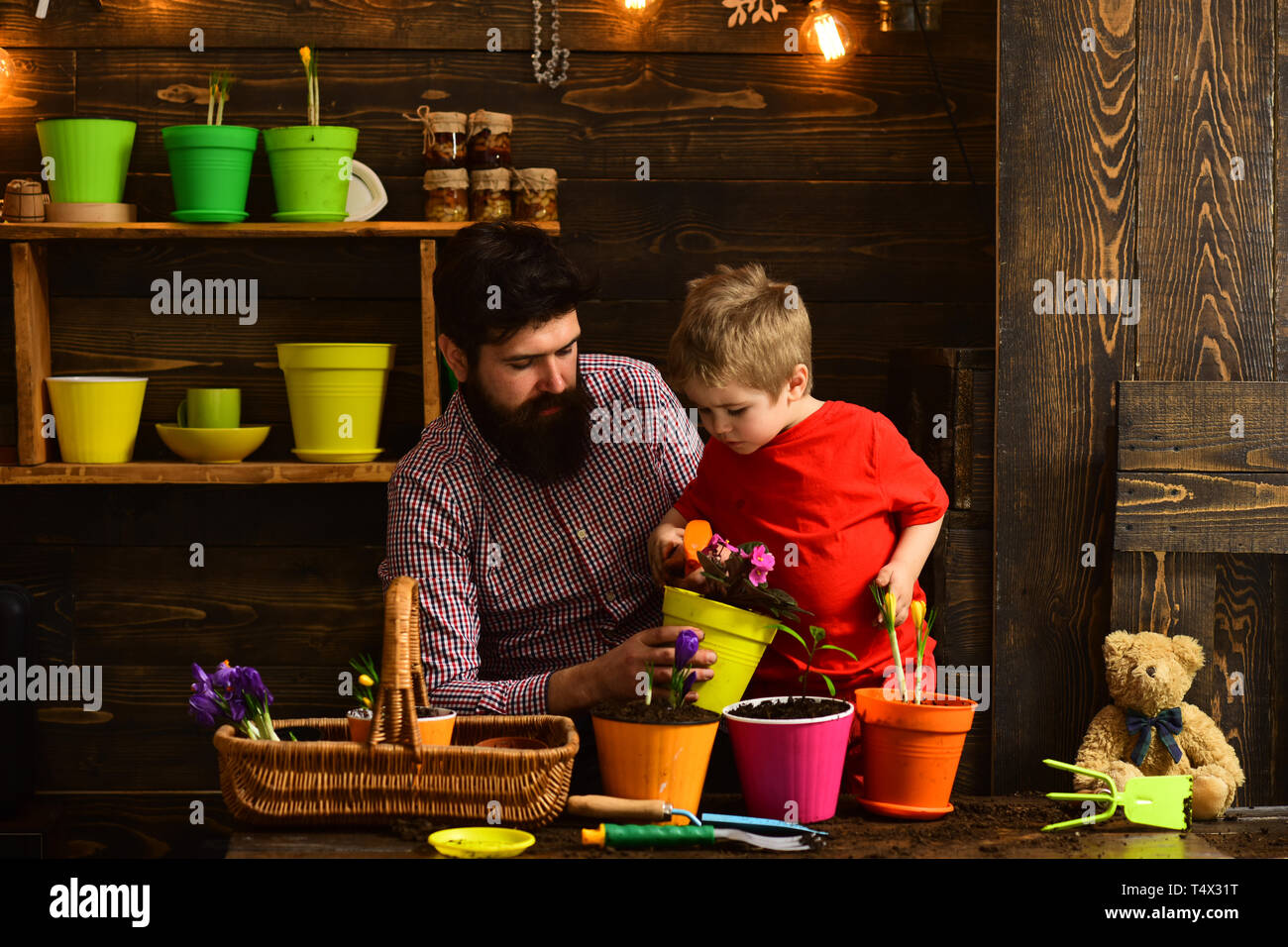 Family day. Greenhouse. Father and son. Fathers day. Flower care watering. Soil fertilizers. happy gardeners with spring flowers. bearded man and litt - Stock Image
