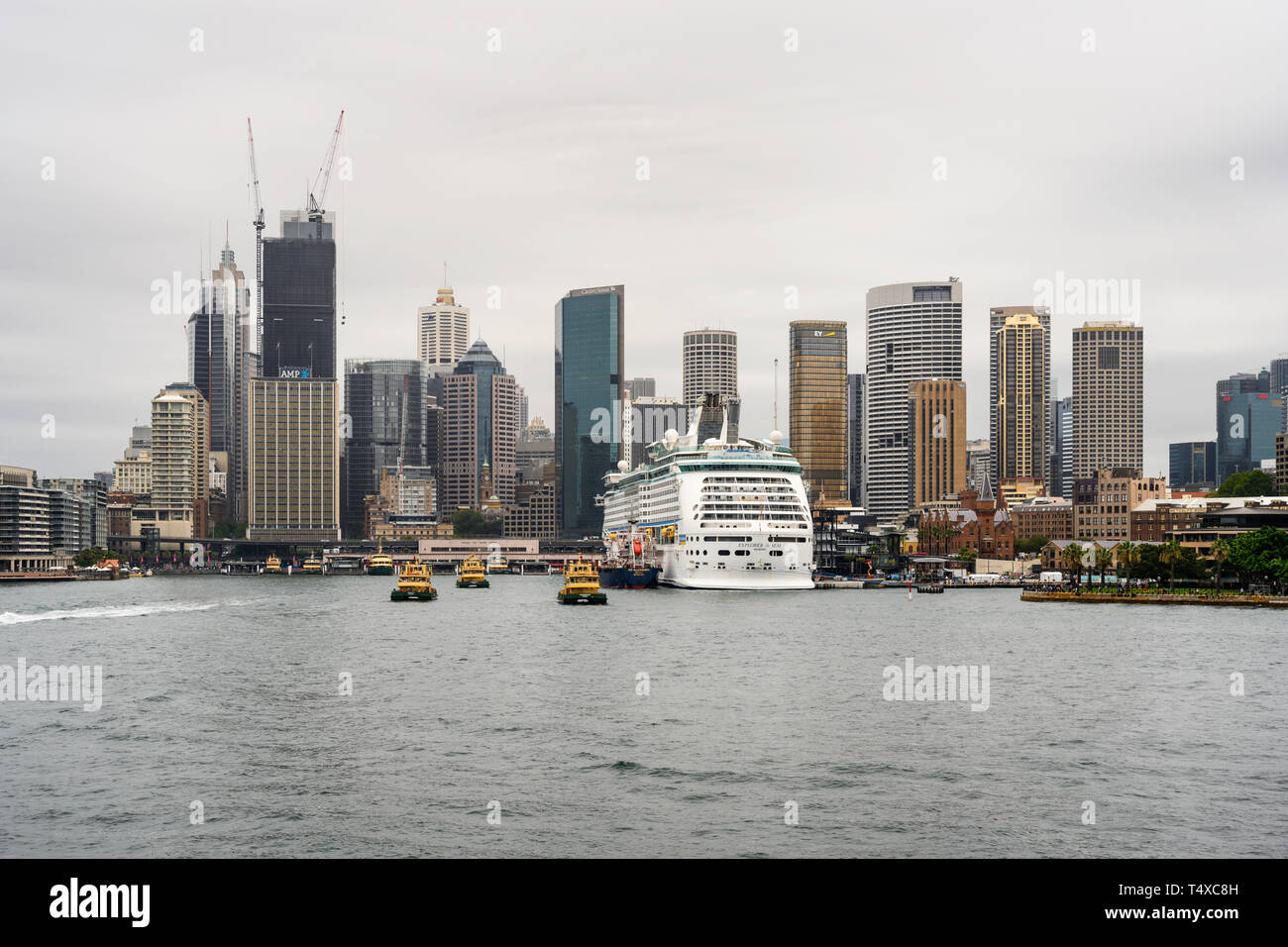 Royal Caribbean cruise ship 'Explorer of the Seas' berthed at the Overseas Passenger Terminal, Sydney, Australia.  Seen from Sydney Harbour. - Stock Image