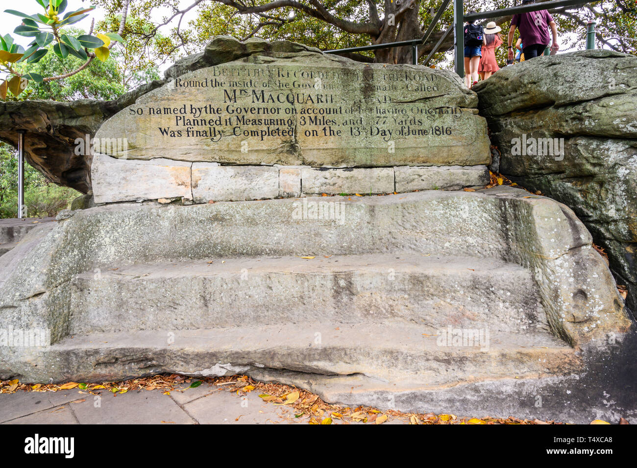 Mrs Macqurie's Chair (1810) is a bench cut into exposed sandstone on Mrs Macqurie's Point in the The Domain, Sydney, NSW, Australia. Stock Photo