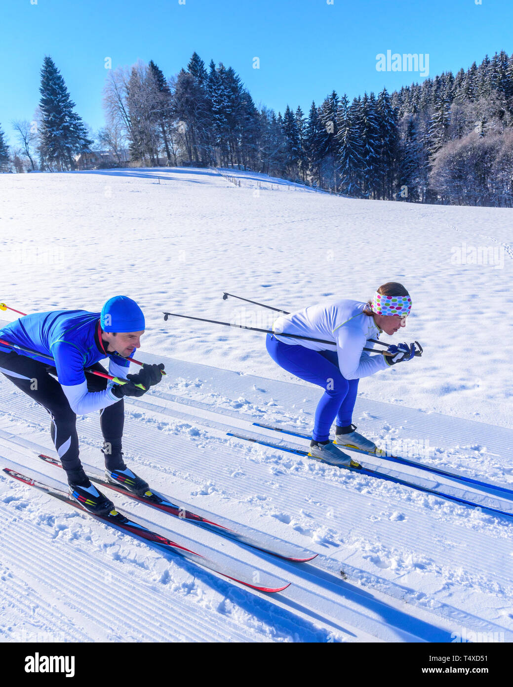 Cross-country skiiers in downhill position - Stock Image