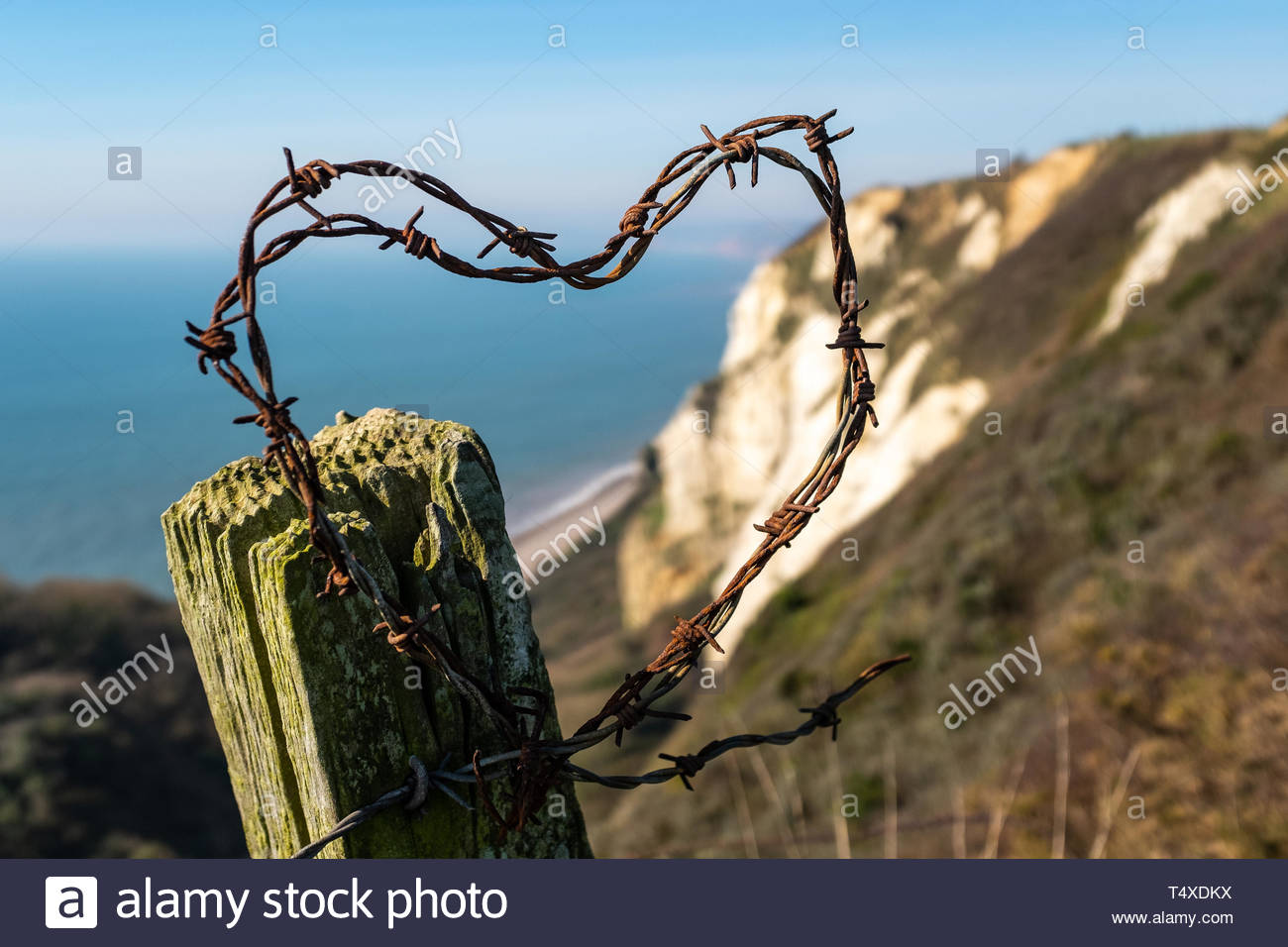 Barbed wire on a fence post shaped into a heart with a back drop of white cliffs in Devon, against a clear blue sky - Stock Image