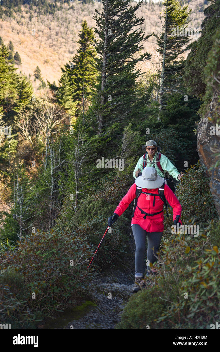 An adult fit elderly couple hiking along narrow trail at Charlies Bunion in Great Smoky Mountains National Park, near Gatlinburg, TN, USA - Stock Image