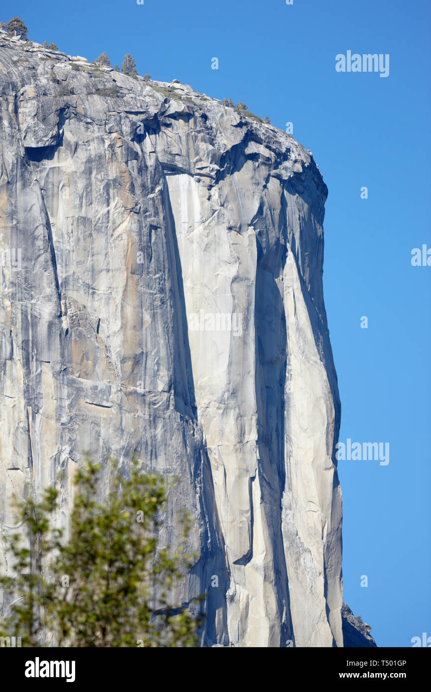 Granite Rockface, El Capitan, Yosemite, California, America. Stock Photo