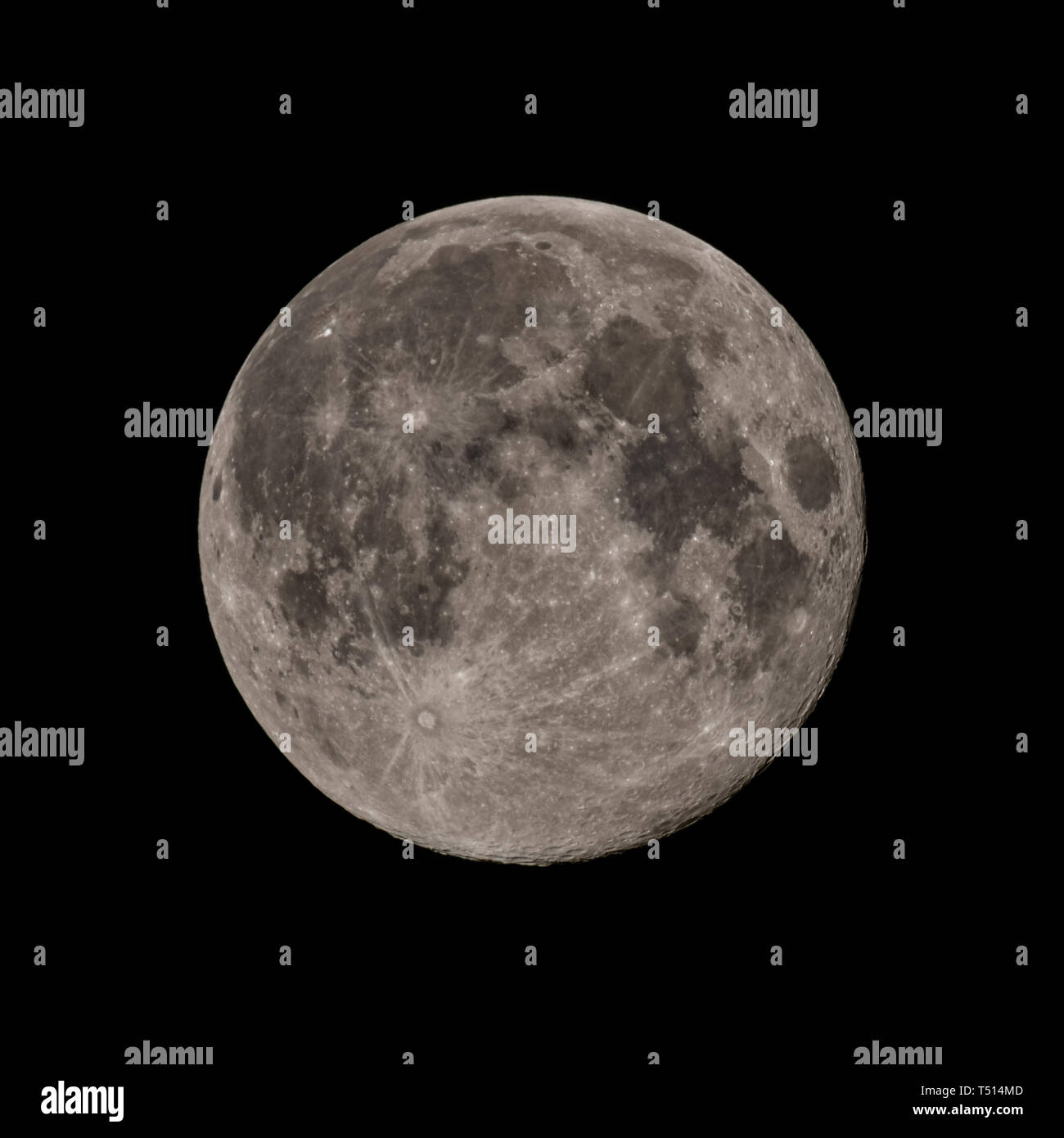 First Spring Full Moon, high resolution detailed image - Stock Image
