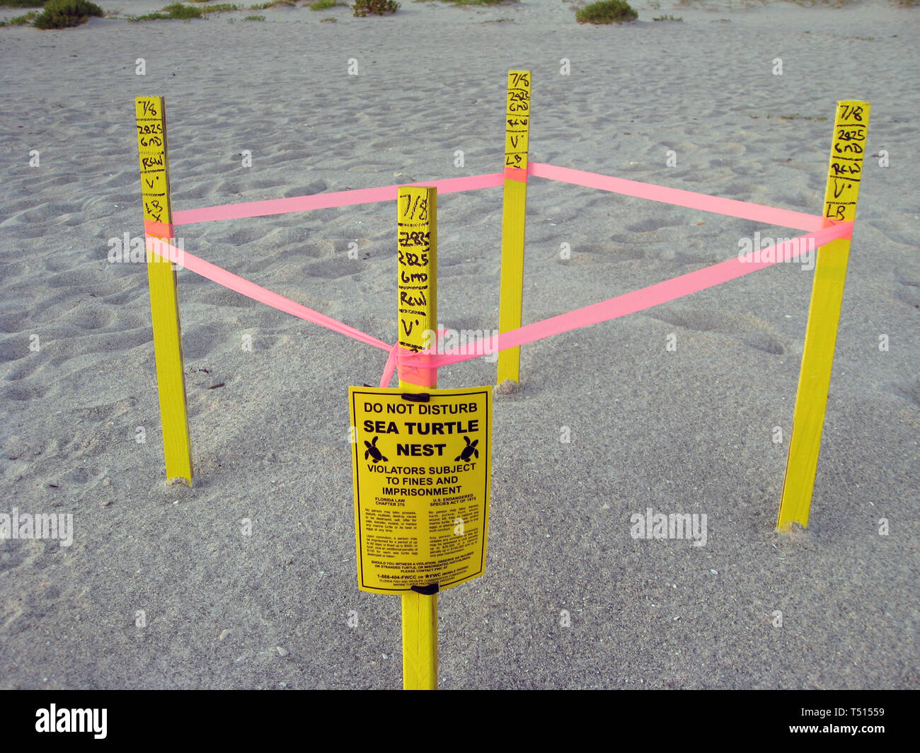 Dig A Hole Stock Photos & Dig A Hole Stock Images - Alamy