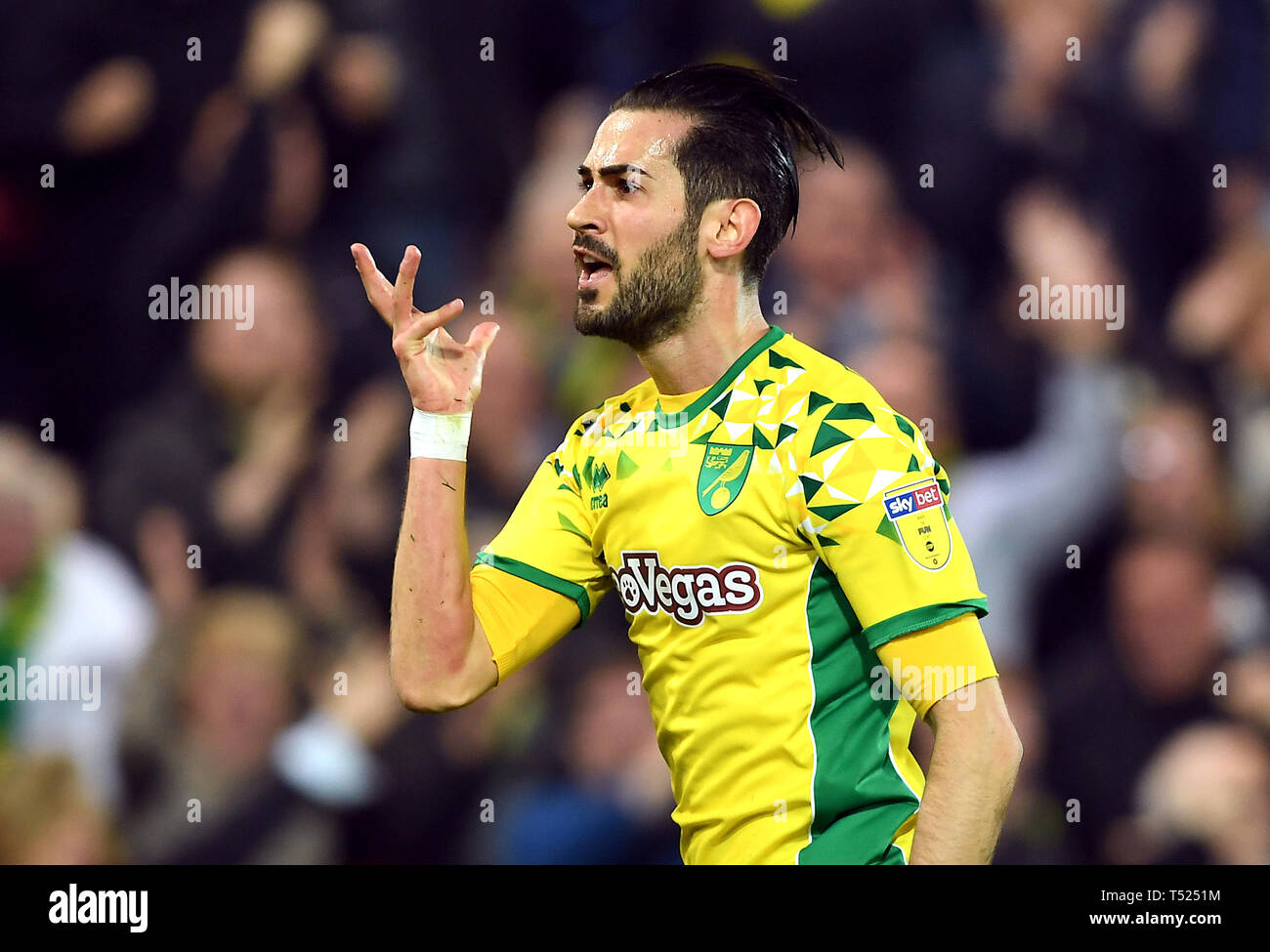 Norwich City's Mario Vrancic celebrates scoring his side's second goal of the game during the Sky Bet Championship match at Carrow Road, Norwich. Stock Photo