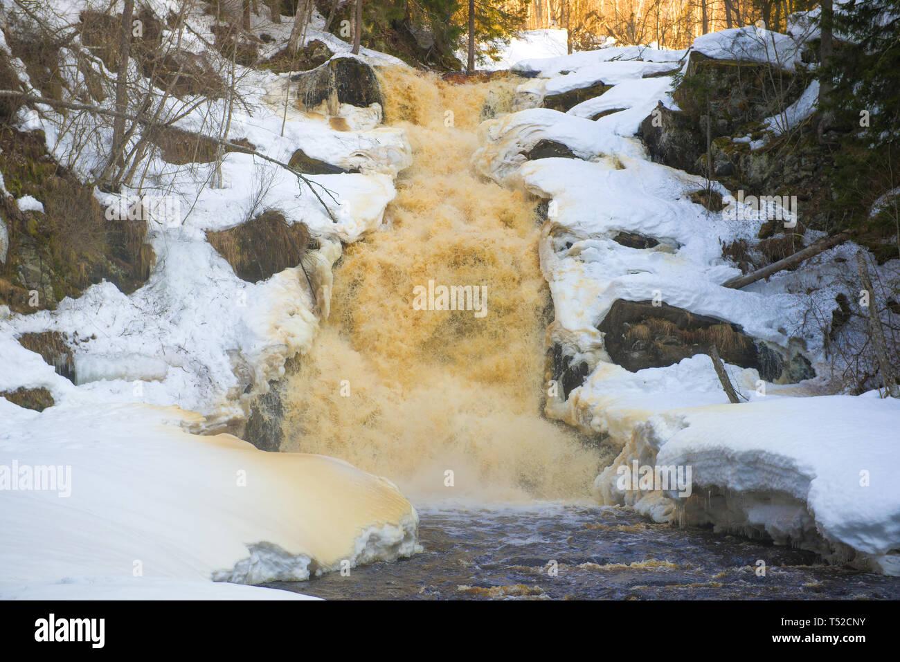 Jukankoski waterfall close up in the April morning. Karelia, Russia - Stock Image