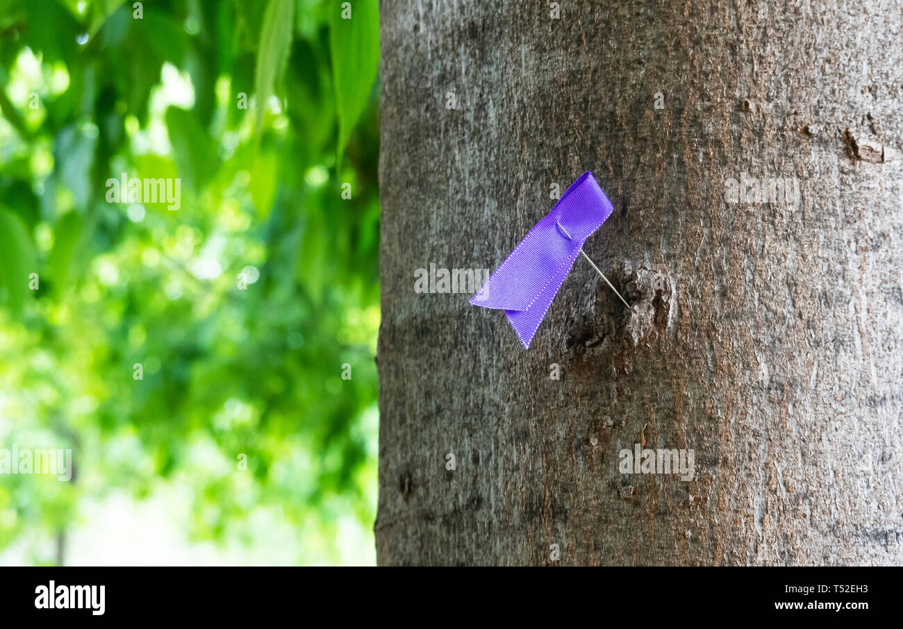 A folded purple ribbon pinned to a tree during Holy Week in Seville to symbolize religious tolerance - Stock Image