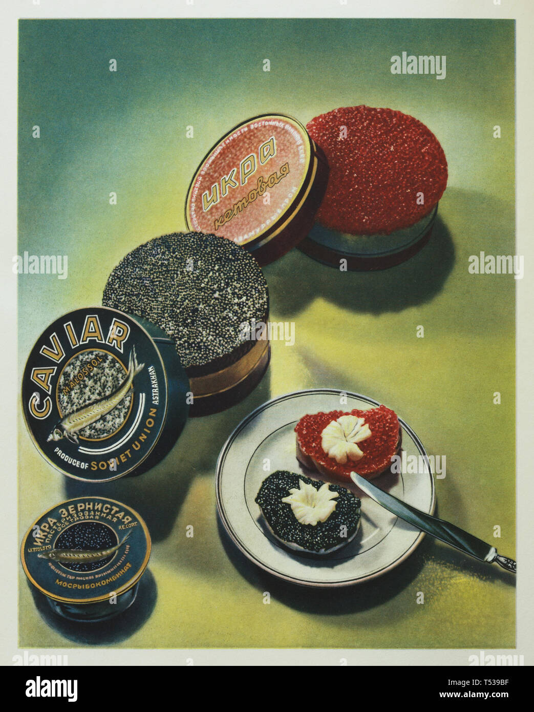 Soviet keta salmon red caviar and sturgeon black caviar depicted in the colour illustration in the Book of Tasty and Healthy Food published in the Soviet Union (1953). Stock Photo