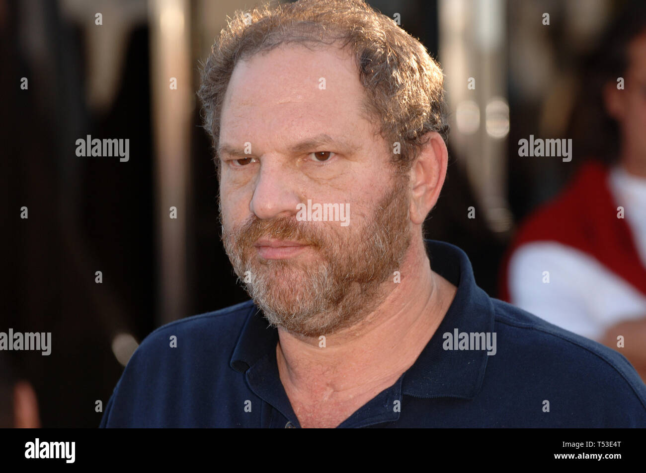 CANNES, FRANCE. May 14, 2005: Outgoing Miramax boss HARVEY WEINSTEIN at the 58th Annual Film Festival de Cannes. © 2005 Paul Smith / Featureflash - Stock Image
