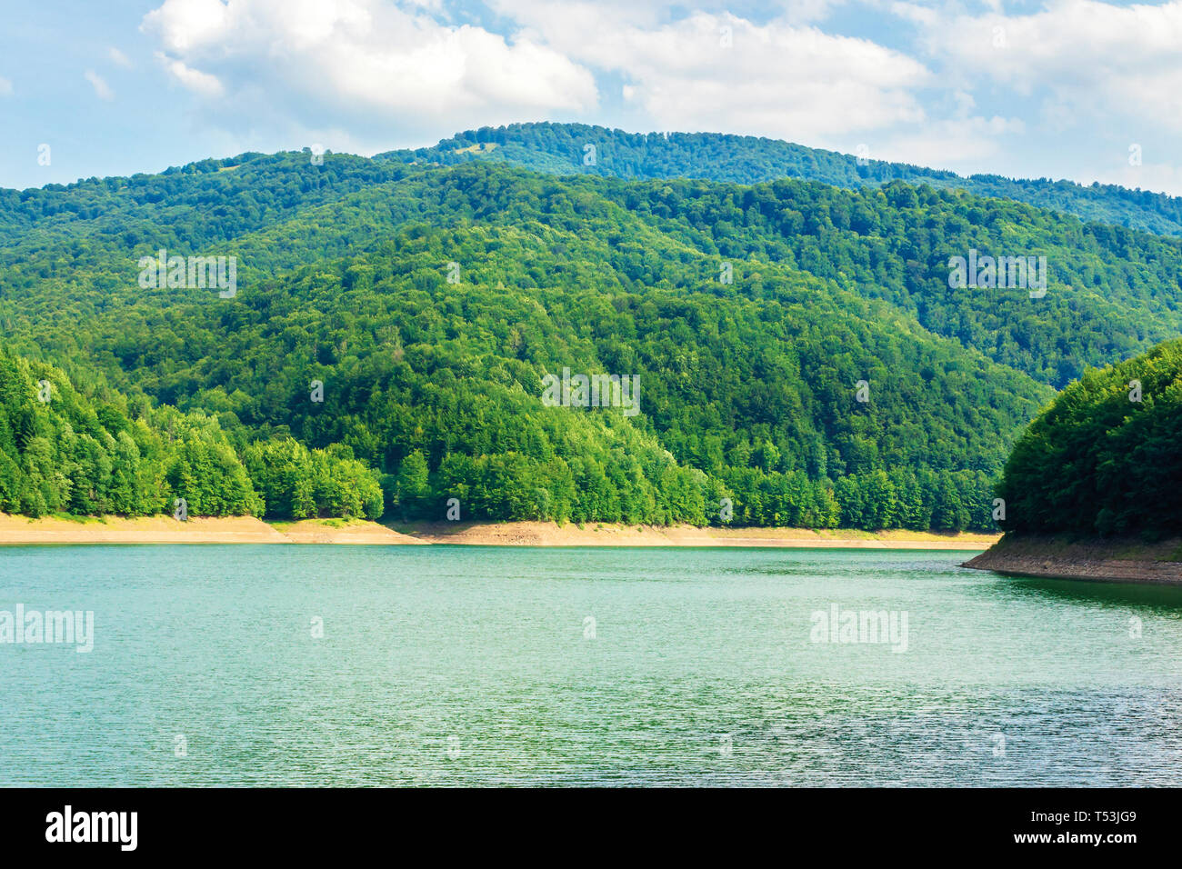 water storage reservoir in mountains. beautiful nature scenery in summer. forest on the shore around. wonderful sunny day. location Tereblya Rika HPP - Stock Image