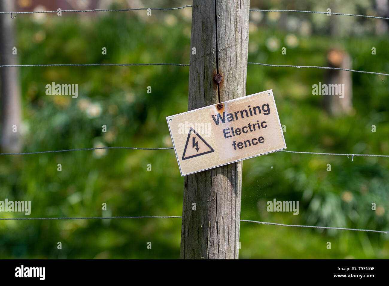 A crooked sign warning people that an electric fence is present. The sign is attached to a wire fence with a green background. Stock Photo