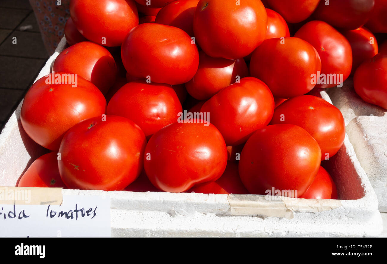 Bright red Florida tomatoes at a fruit and vegetable stand on a Saturday morning farmers market in Fort Pierce Florida.  Horizonal viewpoint. - Stock Image