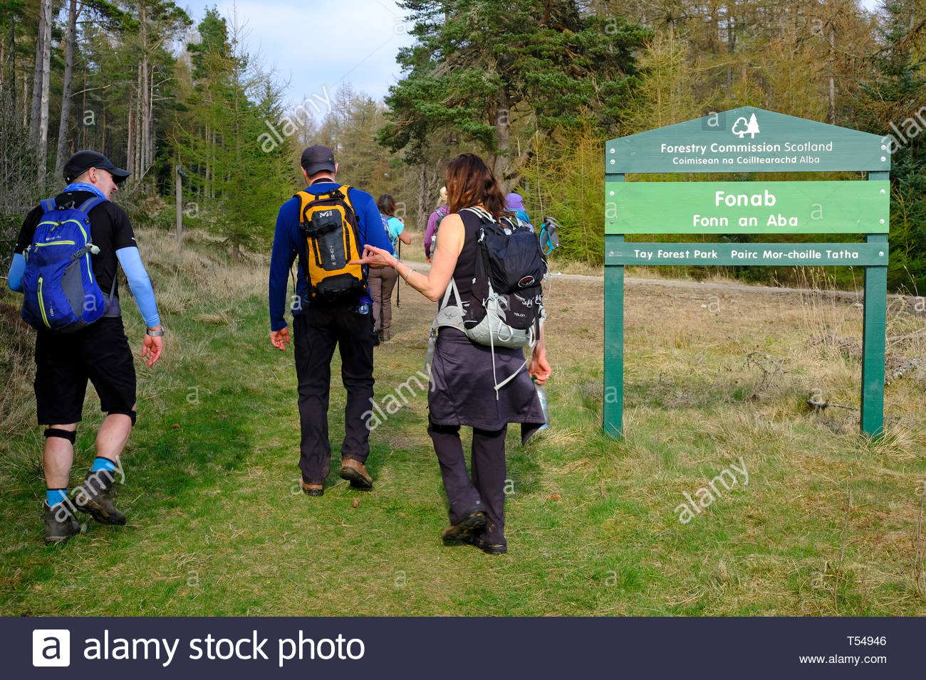 Walkers entering the Tay Forest Park as part of the Rob Roy Way, Perthshire, Scotland - Stock Image