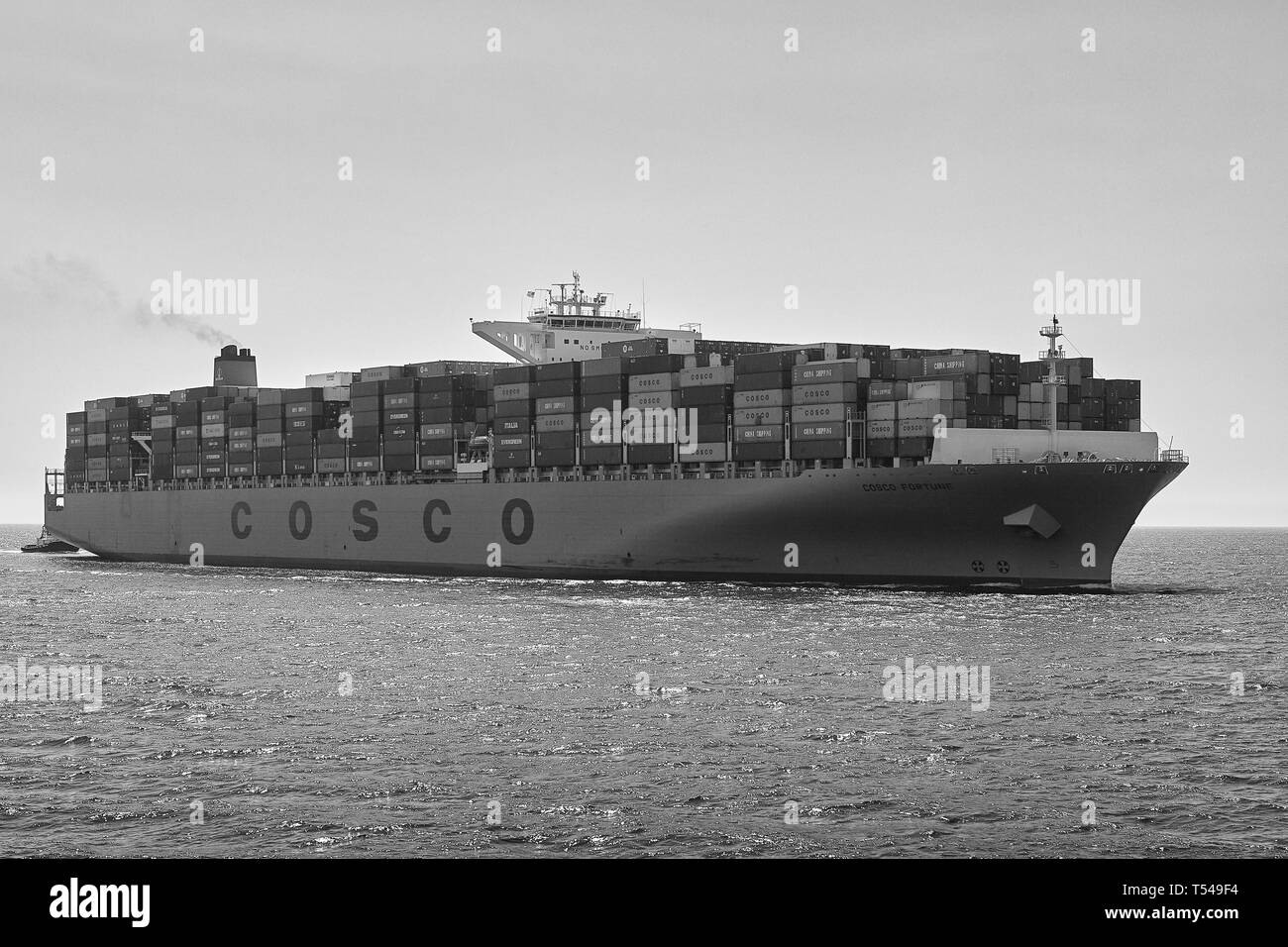 Black And White Image Of The COSCO Shipping, Container Ship, COSCO FORTUNE, Entering The Port Of Long Beach, California, USA. - Stock Image