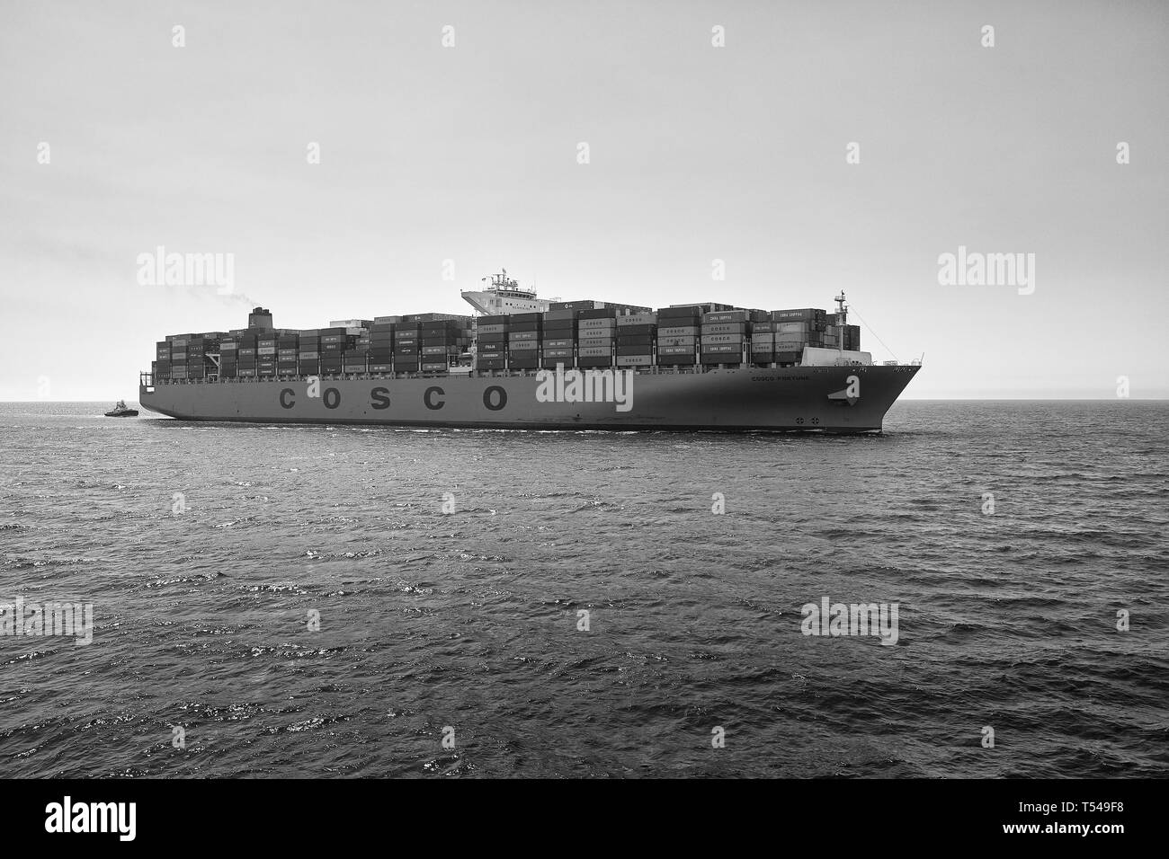 Black And White Image Of The COSCO Shipping Container Ship, COSCO FORTUNE, Entering The Port Of Long Beach, California, USA. - Stock Image