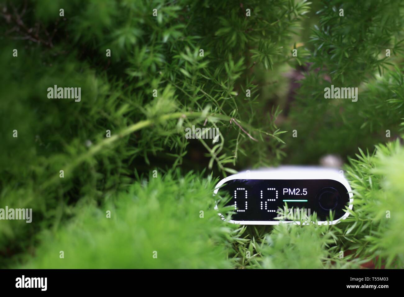 measuring outdoors air quality. particulate matter 2.5 (pm.2.5) sensor in a bush. harmful small dust detector indicated healthy acceptable air quality Stock Photo