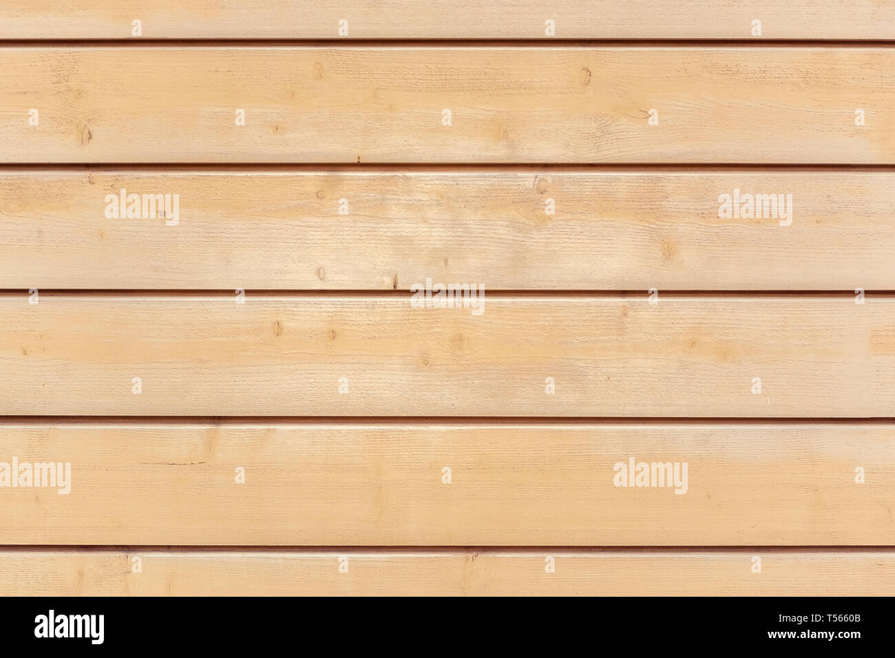 Fragment of a wall of wooden pine planks for use as a background. - Stock Image