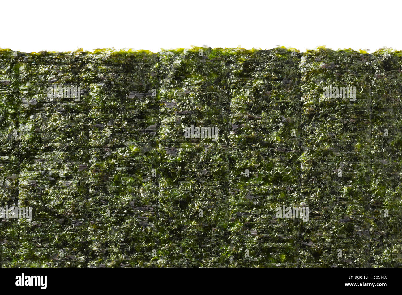 Sheet of dried green nori with space for text at the top - Stock Image