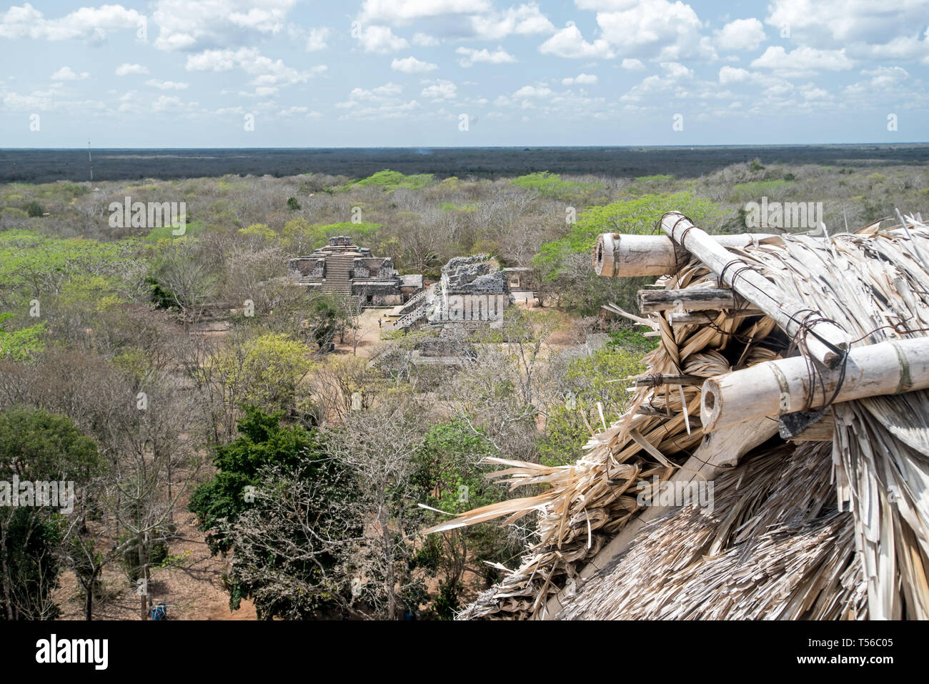 The oval palace from the top of the Acropolis at Ek Balaam - Stock Image
