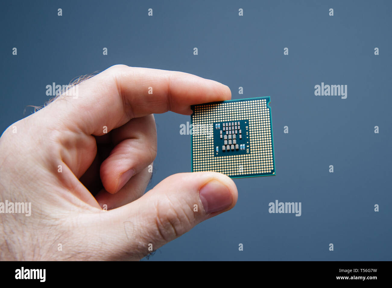 Male IT professional holding in hand new powerful CPU Central processing unit with high core count and elevated frequency - isolated on blue office background - Stock Image